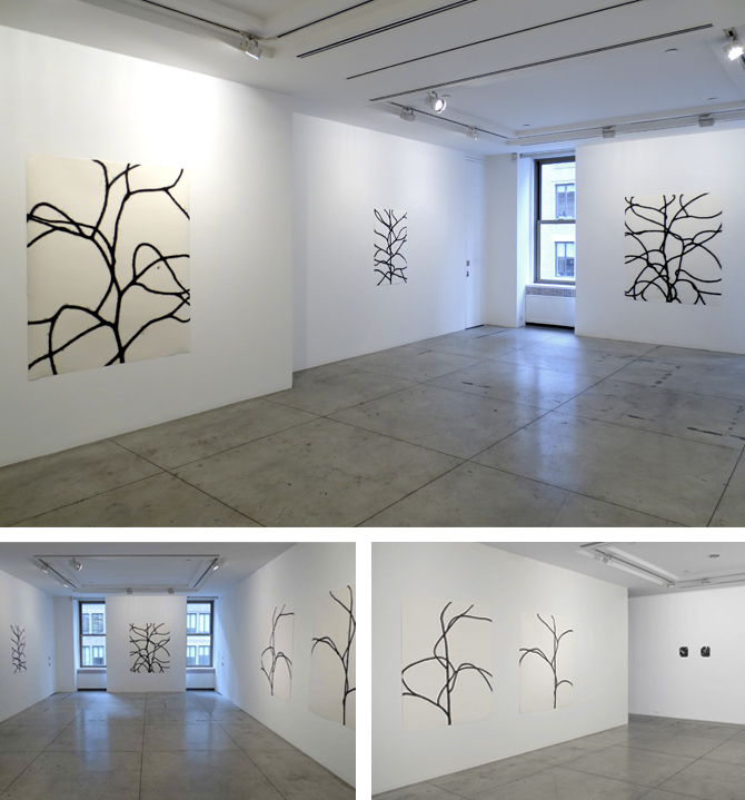Jason McCoy Gallery, New York,	2013