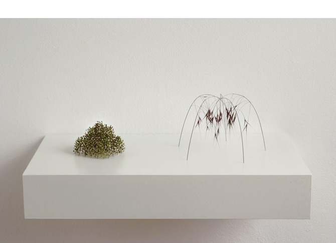 Zwei kleine Kuppeln, two little domes, 2009, plant stalks, grass stalks