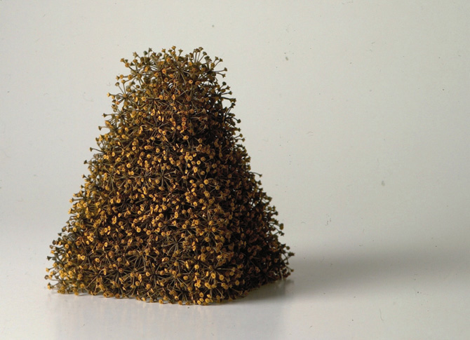 Kleiner Turm, little tower, 1999, ivy seeds