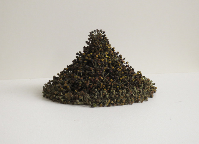 Kleiner Kegel, little cone, 2013, ivy seeds